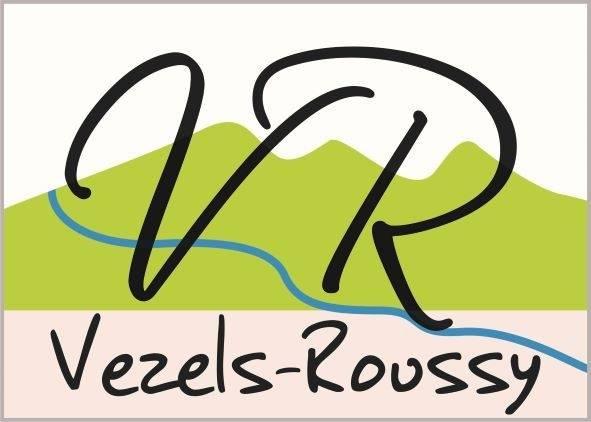 Logo Vezels (2)